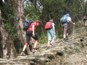 Trek_Mardi_Himal_vig01