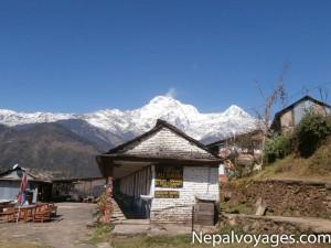 Randonnée_des_villages_gurung-18