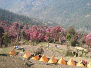 Trek_Mardi_Himal_img07